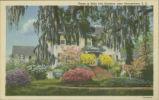 Scene in Belle Isle Gardens, near Georgetown, S.C